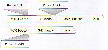 IS-IS Deployment in IP Networks Seite 63 Figure 2-1
